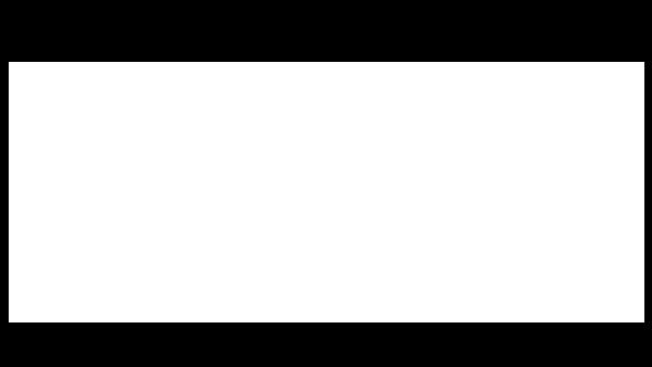 Ritzky - organisatieadvies